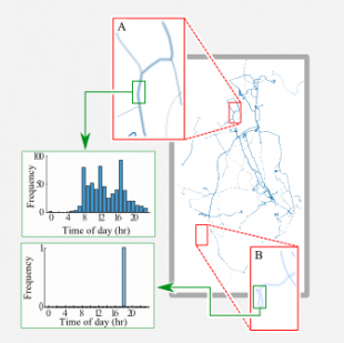 Figure Figure 3 : Example trajectories in the HW-POL1 dataset. Region A highlights a trajectory labelled as normal and having a wide temporal distribution. Region B highlights a trajectory only observed once and labelled as anomalous.